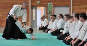 dojo à valence, ecole d'arts martiaux et bien-etre
