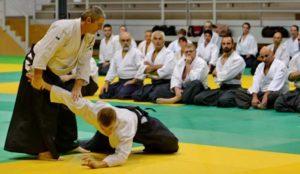 stage d'aikido avec alain peyrache