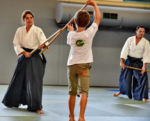 Aikido-valence 26