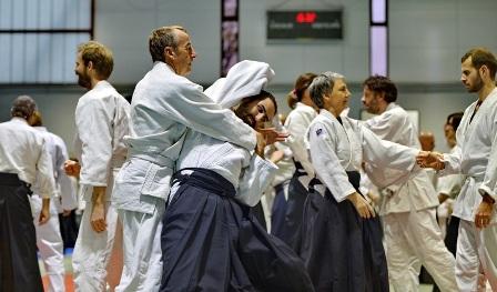 valence stage aikido dojo